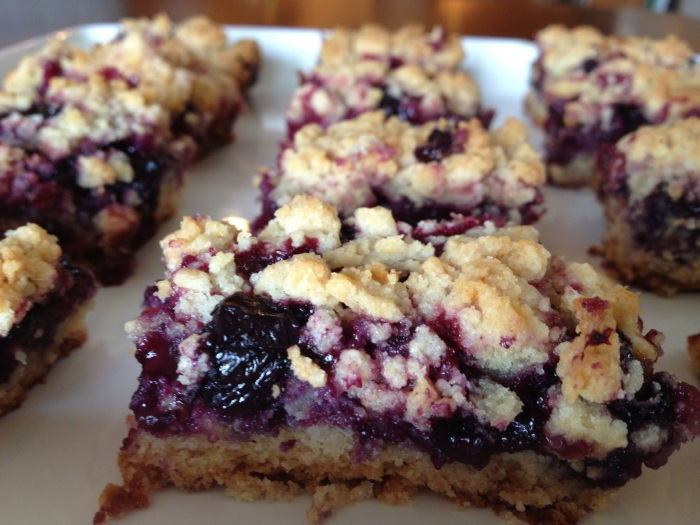 blueberry crumble bars // kitschandcamera.com