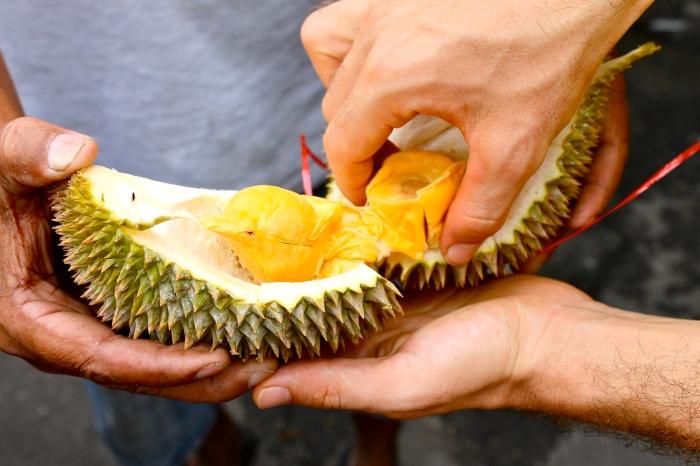 durian in kuala lumpur // kitschandcamera.com